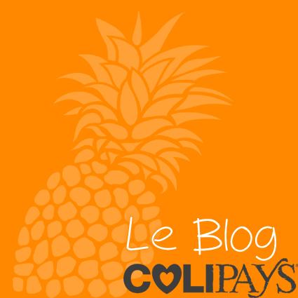 nouveau blog copier