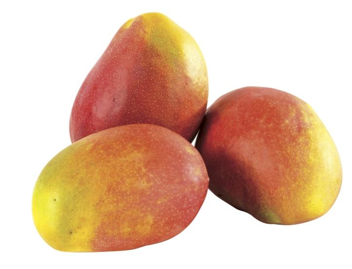 Mangues livrées par COLIPAYS