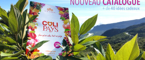 Catalogue de Letchis Noël 2015 Colipays