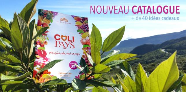 Catalogue de Letchis Noël 2015 Colipays