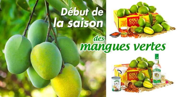 Mangues vertes de La Réunion