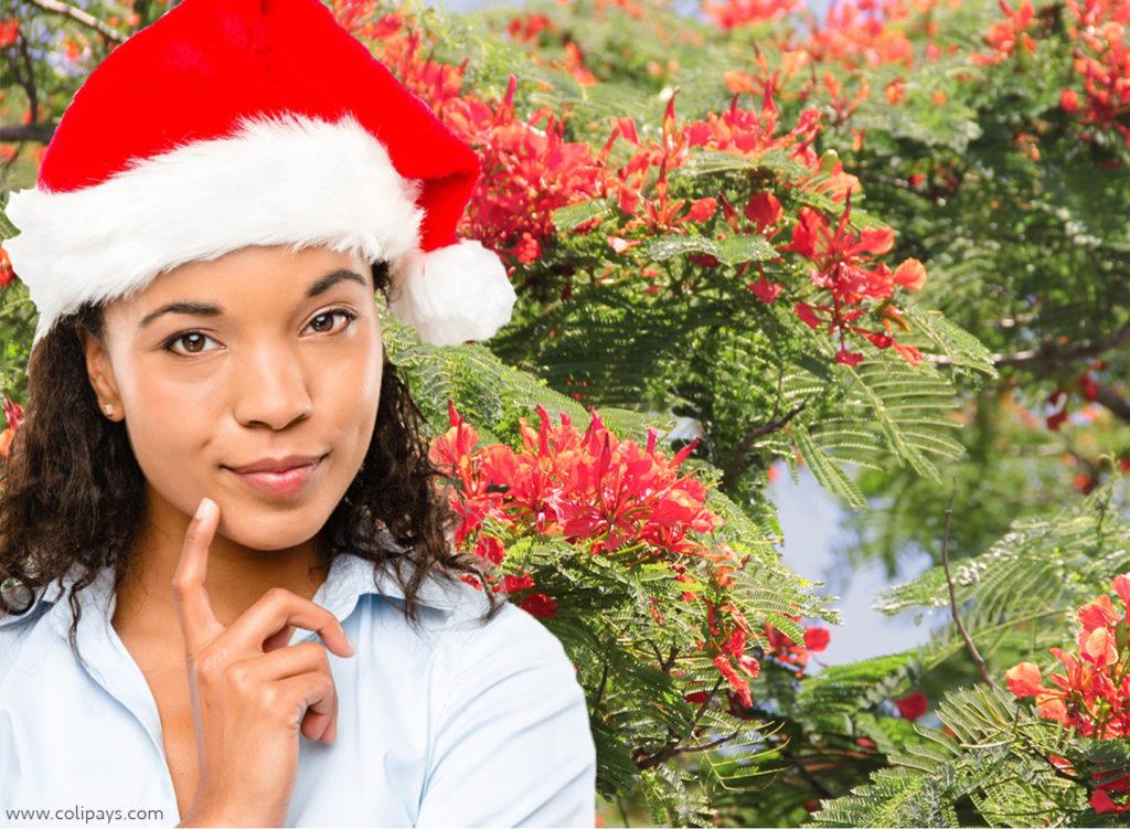 Joyeux Noel Mere Noel.Cadeau Mere Noel